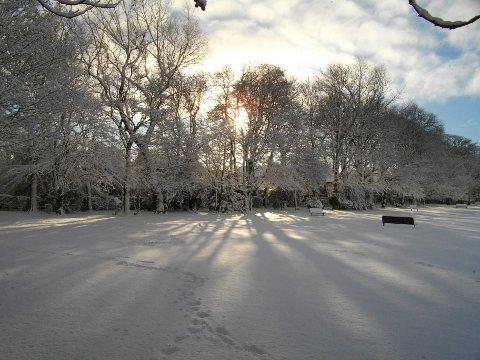 FIN DAG: Det vil trolig bli en fin vinterdag torsdag.