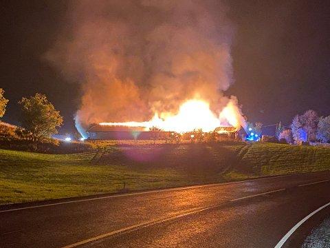 VOLDSOMME FLAMMER: Natt til 28. september brøt det ut full brann i en låve med 60 storfe i Nannestad.