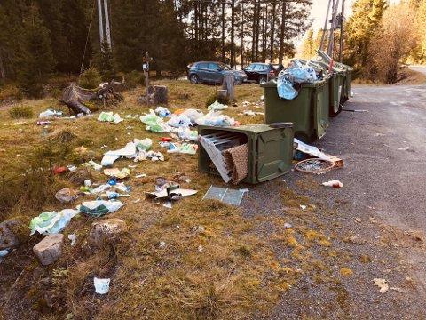 SØPPEL: Det flyter over av søppel på Mylla.