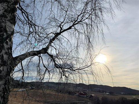 SOL: Tirsdag var det sol og varmegrader. Torsdag meldes det om skyfri himmel med én minusgrad eller to.