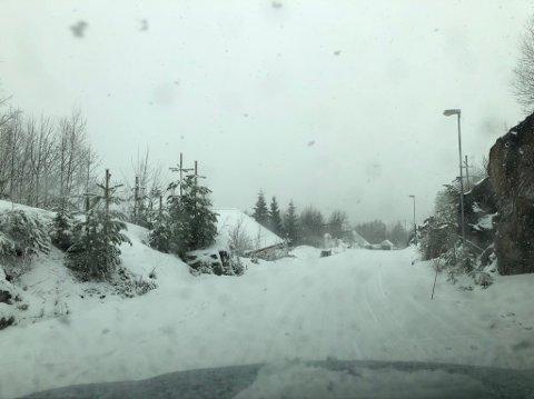 SNØ OG TÅKE: Flere centimeter med snø la seg på Grua torsdag. Fredag venter det varmegrader.