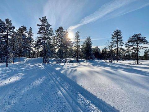 Det kan bli nydelige dager i skiløypene til uka. Dette bildet er fra Eikvelta i Vestre Toten.