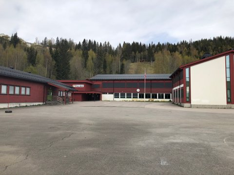 GRUA SKOLE: Grua skole er ifølge foresatte en meget velfungerende skole. Nå må de dele av sine ressurser med Lunner barneskole.
