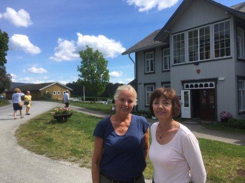 Stiller ut: Søstrene Mari Hidem Søfferud og Kari Hidem Sætre foran Kommunehuset på Granavollen.