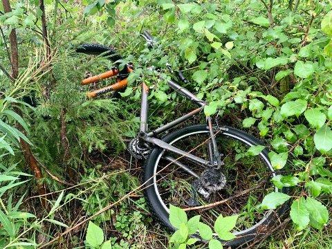 GJEMT: Denne sykkelen var den eneste sykkelen som var å se søndag ettermiddag. Den var gjemt i busk og kratt i nærheten av gamle Furumo stasjon.