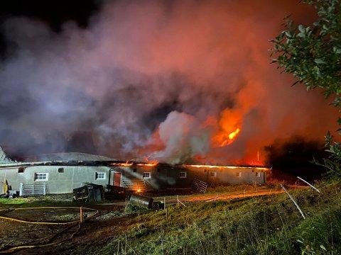 FLAMMENES ROV: Ifølge politiet var det om lag 60 storfe i låven da brannen brøt ut. Dyr ble evakuert helt fram til taket raste. Foto: Remi Presttun