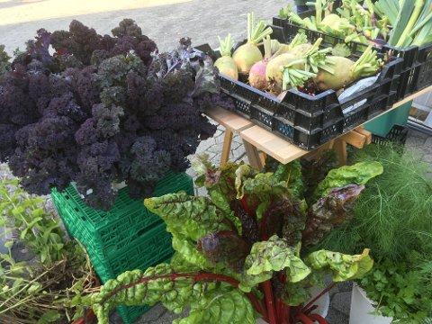 HAGELAGET: Ferske grønnsaker og mye mer kan du finne på torget og i Storgata.