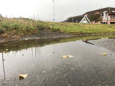REGNVÅTT: Det blir regn denne uken og inn i neste uke på Hadeland.