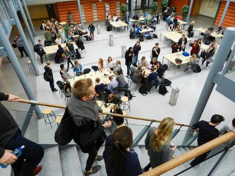Halden videregående skole: Fredag formiddag fikk 11.000 ungdommer i hele Østfold melding om at de hadde kommet inn på kjemi ved Halden videregående skole.
