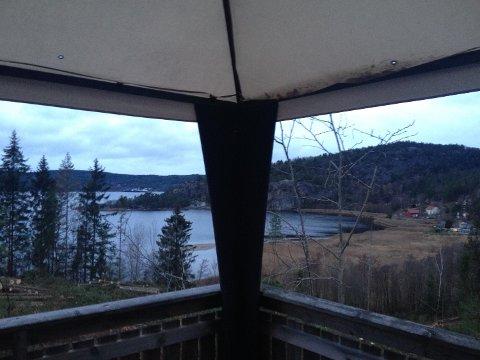 ETTER HOGST: Slik ser det ut fra verandaen hos Astrid Bakke og Cato Nilsen etter at skogen ble hogget.
