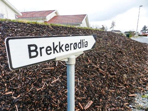 BREKKERØDLIA: Det bor mange barnefamilier på Brekkerød og i Brekkerødlia. Politiet mener at de ikke har grunn til å være mer redde enn andre for at en lignende hendelse skal skje igjen.
