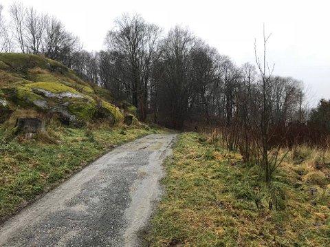 SAKEN ETTERFORSKES: Det var under en joggetur her på Rødsberget at kvinnen skal ha blitt overfalt av to menn.