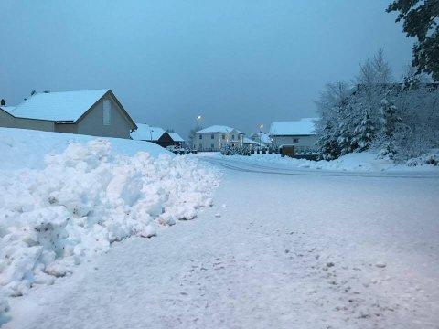 Slik ser det ut i Østfold onsdag morgen. Men mange steder er nedbøren i ferd med å gå over til regn. (Foto: Morten Ulekleiv)