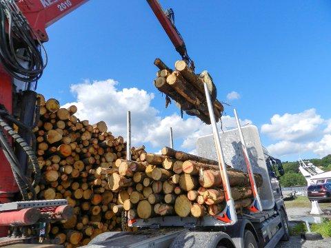 MYE KJØRING: På grunn av begrensningene til Stensbrua blir det 750 ekstra vogntog med tømmer som kjører over den i året. Arkiv.