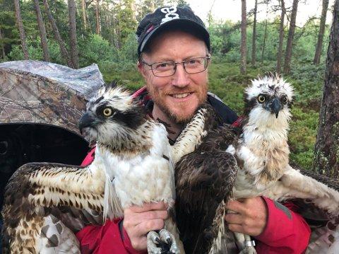 Rune Aae sier at Fru Søndre mest sannsynlig har dødd under sin tur ned til varmere strøk. Her er han med to fiskeørner som ble merket i sommer.