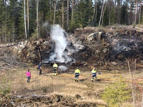 BRANN: Brannvesenet i Aremark slukket brann i et kratt.