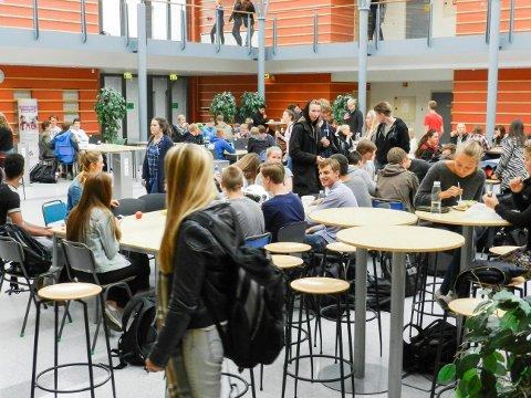 Ungdommer i Halden får et dårligere skoletilbud dersom fylkesrådmannens skolebruksplan vedtas.