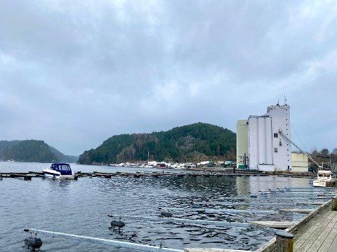 Fra indre havn er det god utsikt til Sauøya og Østfoldkorn SA.