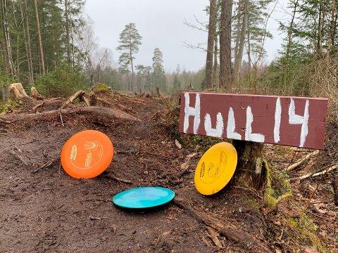 POPULÆRT: Frisbeegolfbanen i Østgaardskogen (bildet) er populær. Nå ser det ut til at TTIFs planer om bane i Vadet-skogen også kan bli en realitet.