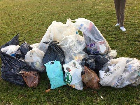 ÅRETS «FANGST»: Her er søpla som elevene fant langs Mjøsa.