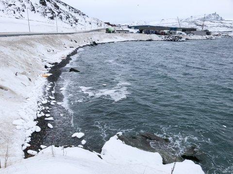 ISOPOR I FJÆRA: Det er fremdeles en del isopor i fjæra like ved Boreals sitt verksted på vei til Meland.