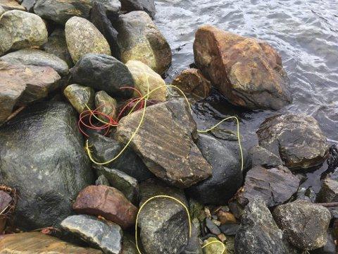 Plasttrådar som ein har funne i fjørene langs Sørfjorden. Desse kom frå skytestreng. Illustrasjonsfoto: Lars Ystanes