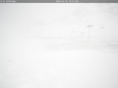 Svært dårleg sikt: Slik ser det ut på Haukelifjell torsdag føremiddag. Foto: Statens vegvesen.