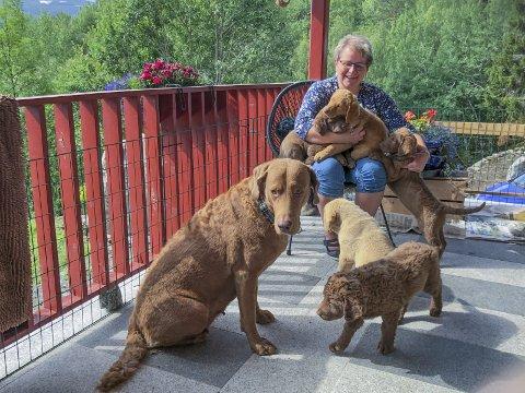 Felles ansvar: Veterinær Ingrid Dale meiner kommunen har eit ansvar for å leggja til rette også for hundar.