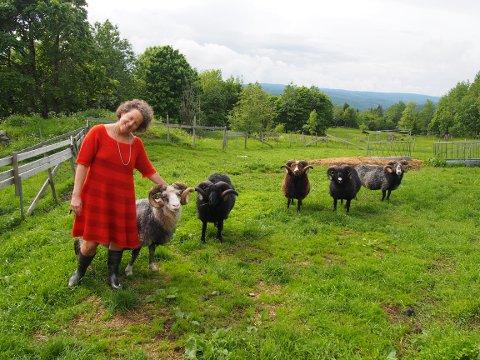 LYSENDE RØDT: Ingun Grimstad Klepp i kjolen Lille M, strikket av Speldsau i tre ulike oranj/røde nyanser. Sauen er Gammel Spel