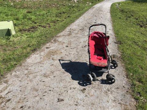BLE STANGET: I denne vogna satt en ettåring da kyrne gikk til angrep.