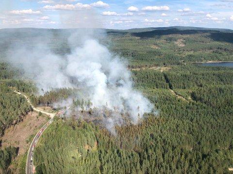 Skogbrann ved Frysjøen i Hedmark på onsdag ettermiddag. I Hedmark og Oppland og øvrig deler av Sør-Norge er skogbrannfaren fremdeles meget stor. I Rogaland og Hordaland er den stor ifølge Meteorologisk institutt. Foto: Skogbrannhelikopteret / NTB scanpix