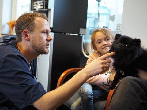 HJALP ODA: Felix Lande på Karmsund dyrehospital hjalp hunden Oda (1) og eieren Olivia (7) da valpen falt i trappa for ett år siden.