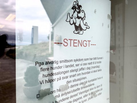 Hundesalongen på Avaldsnes valgte å holde stengt mandag på grunn av det pågående sykdomsutbruddet.