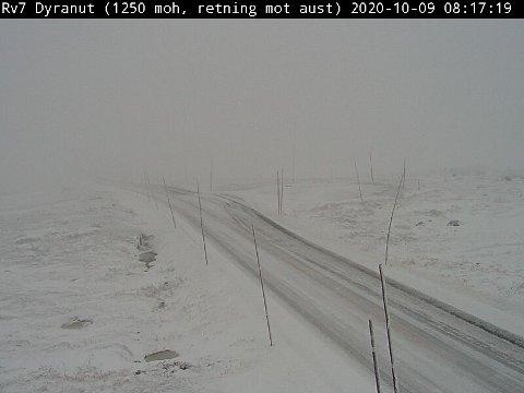 HVITT: Slik så det ut på Hardangervidda fredag morgen.