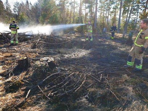 700 kvadratmeter ble svidd av da en gressbrann kom ut av kontroll i Stange i Innlandet lørdag.