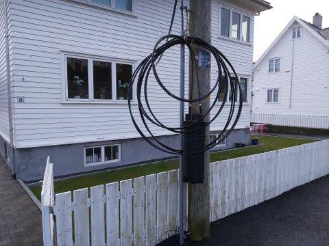 REAGERER: Andreas Dunkley forteller at installasjonen har hengt slik i Jonas Lies gate i Haugesund sentrum siden 2018.