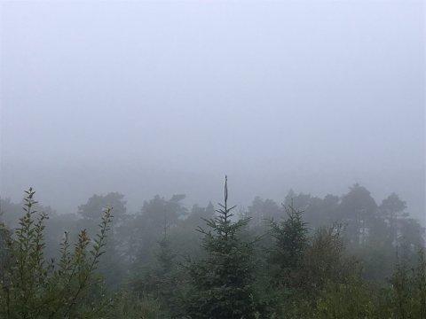 TÅKE: Tåken lå tungt over Karmøy og Haugesund onsdag morgen.