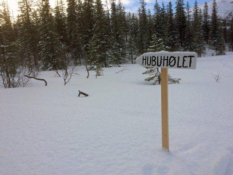 Hubuhølet i Randalen.