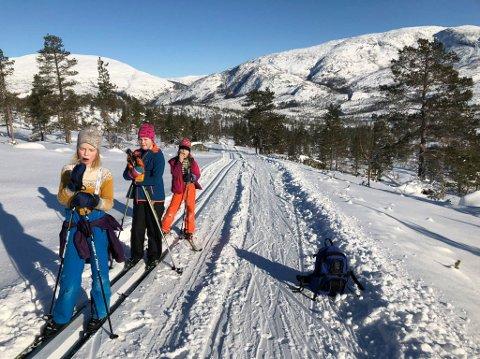 UT PÅ TUR: Det er flotte forhold for å gå på ski, og søndag foreslår vi både en tur i Kjærstadmarka og en tur i Herringen/Sjåmoen.
