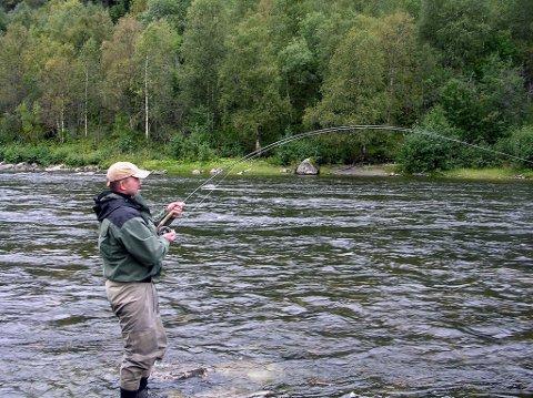 Det er stor interesse for å fiske laks i Vefsna til sommeren.