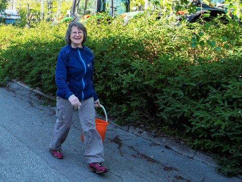 BÆRPLUKKING: Haldis Holand Sjånes er en fast bærplukker og har gjort det i over 40 år. Nå gleder hun seg bare til å gå flere turer for å finne de godeste bærene.