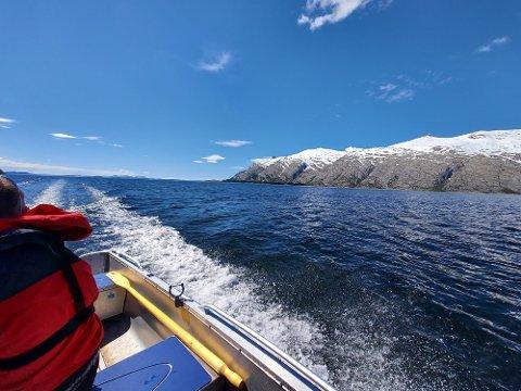 OMRÅDE: Norwegian Cod Company AS i Sandnessjøen vurderer muligheten for å etablere et torskeoppdrettsanlegg i Sørfjorden, ikke så langt fra fjellrekken De syv søstre. Området ligger t.h. i dette bildet. I sør skimter vi Vega.