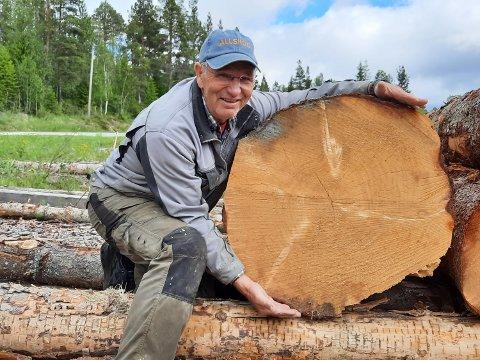Bygdesaga: Pensjonist og bonde, Terje Daleng, med et rundt 150 år gammelt tre som er hentet fra skogene ved Luktvatn. Omkretsen er hele 75 cm ved rota.