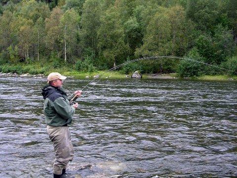 FÅ NAPP: Vil du fiske i elva ved Hattfjelldal må du kjøpe dyre fiskekort fordi det er et lakseførende vassdrag. Men det er ikke mange som har fått laks på kroken.