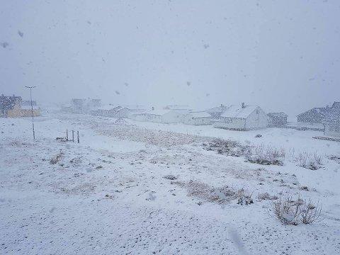 Hvit sommer: Slik var det å våkne i Vardø lørdag. – Jeg kan ikke minnes at vi har hatt så mye snø på denne datoen her, sier fotografen.