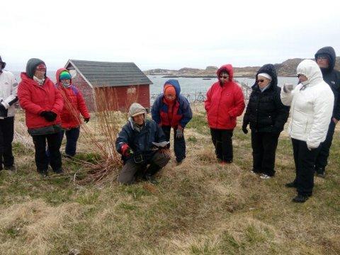 PLANTEVANDRING: Lørdag fikk Bugøynes besøk av den kjente finske agronomen  Aulis Ansa Lehto, som tok dem med ut på plantevandring.
