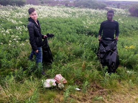PLUKKER HVER DAG: Charles og Chrisander har blitt med på søppelprosjektet, og har samlet søppel nesten hver eneste dag.