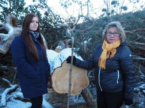 SKUFFET: Elise Melsvik og bestemoren hennes Aud Jorunn Ek, er skuffet over at det enorme treet bak Esso i bukta, plutselig har blitt fjernet.