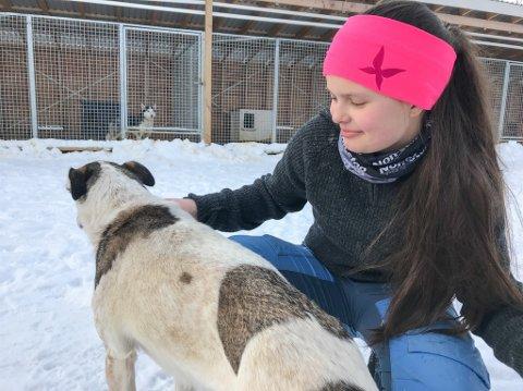 UFLAKS: Ulykken stanset fjorårets deltagelse i Finnmarksløpet litt vel tidlig for Helene Sørensen. Hun har trent opp både kroppen, motivasjonen og hundene, og satser på å ha litt mer flaks i år.