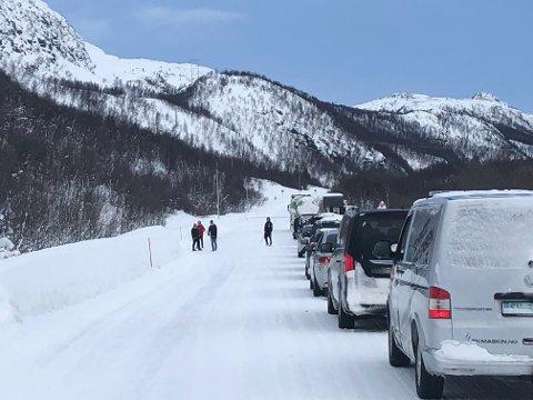KOLONNEKØ: Her står biler i kø ved Leirbotnvann.